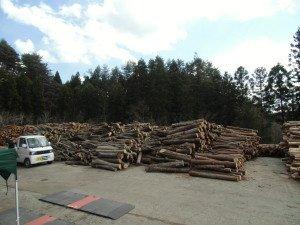 平成25年度4月「自伐林業間伐材買い取り日程」