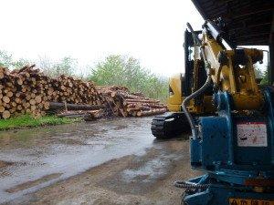 平成25年度5月「自伐林業間伐材買い取り日程」
